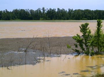 flooded farm fields in Tennessee