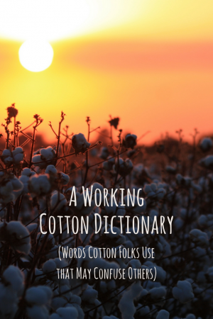 A Working Cotton Dictionary (2)