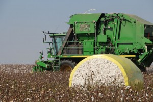 cotton picker grounded temporarily